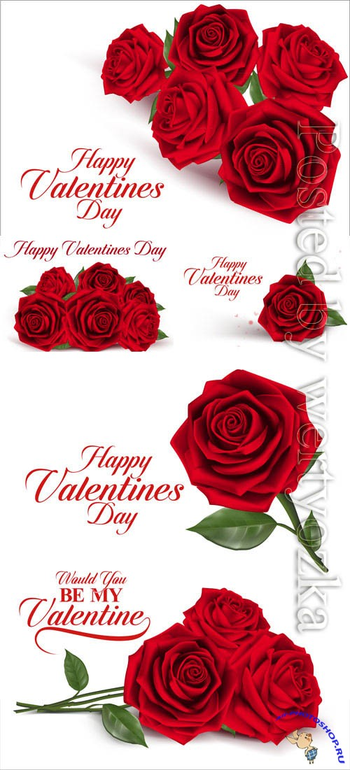 Valentine's day, red roses in vector